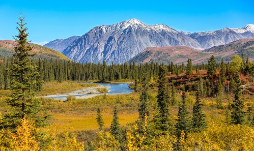 Denali National Park and Preserve photo