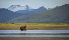 Katmai National Park and Preserve photo